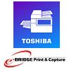 e-BRIDGE Print & Capture